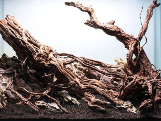 Adding Driftwood to the aquarium is the best way to lower pH levels